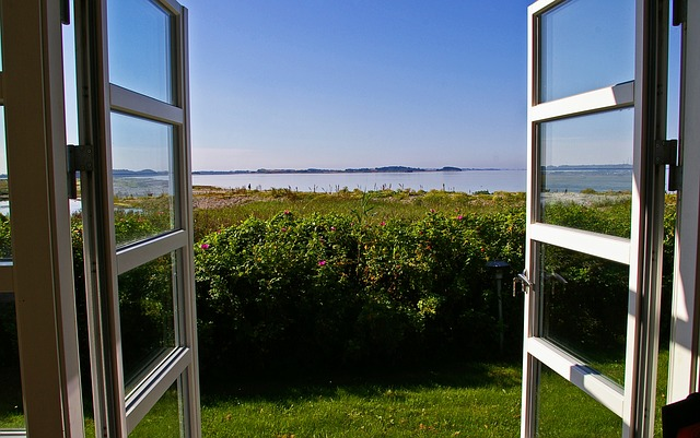 okno, výhled, moře, keře